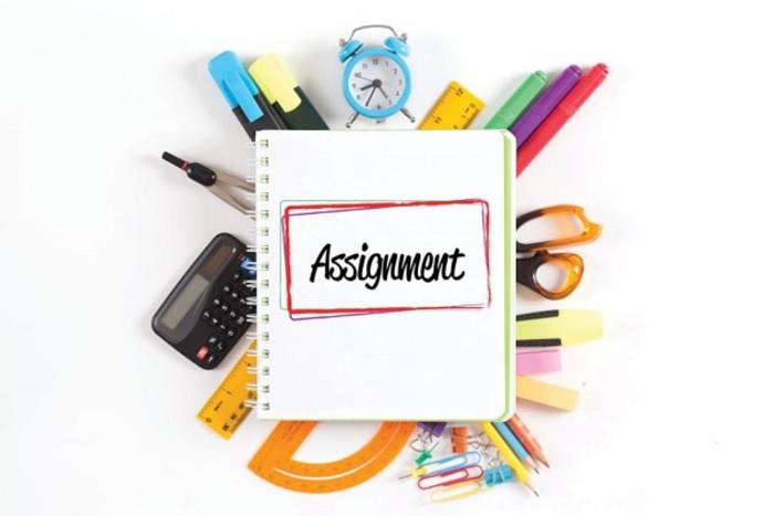 hinh-anh-assignment-la-gi-3