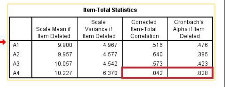 Ảnh 5 - Item-Total Statistics