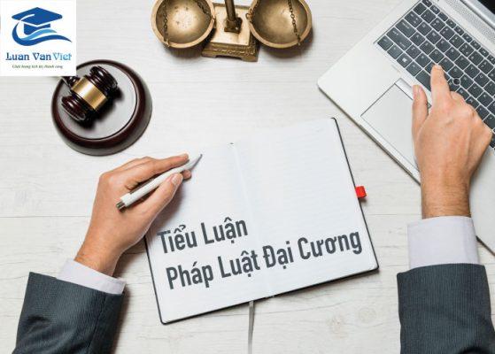 Hinh-anh-tieu-luan-phap-luat-dai-cuong-1