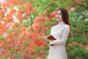 Hình ảnh tác giả Luận Văn Việt group