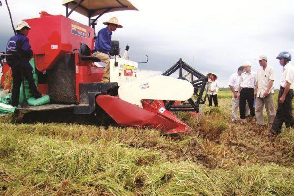 Vì sao phải công nghiệp hóa hiện đại hóa nông nghiệp nông thôn