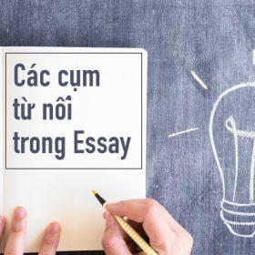 Hình ảnh các từ nối trong essay 1