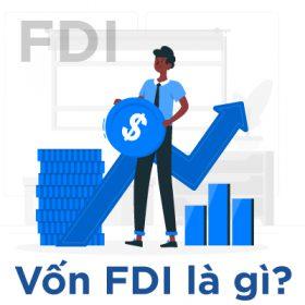 Hình ảnh vốn FDI là gì 1